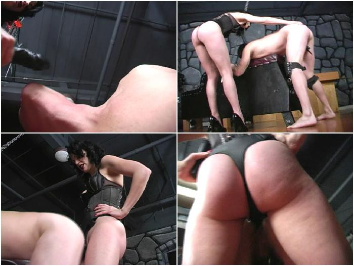 Tiro recommends Neurotically yours spank